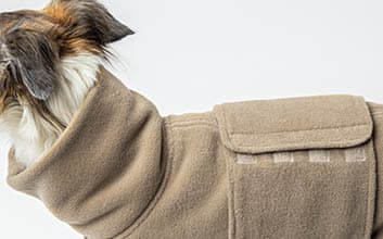 Silken Windsprite trägt beigen Fleece Hundepullover
