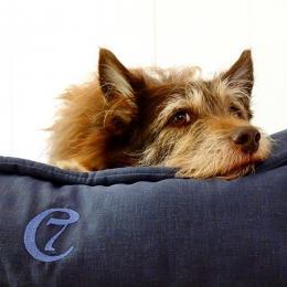 Crinkle (Hundebett Cozy)
