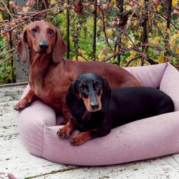 Emma & Beppo (Hundebett Sleepy Deluxe)