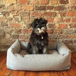 Humphrey (Hundebett Sleepy Deluxe Tweed Grey)