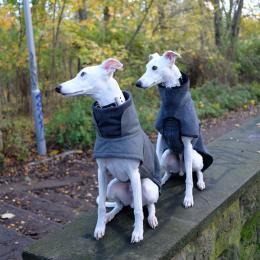 Yohji & Victor (Hundemantel Brooklyn Grey & Herringbone)