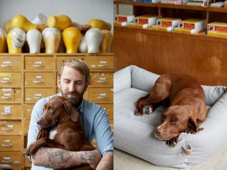 Mark & Fritzi, Fritzi auf Hundebett Sleepy Deluxe