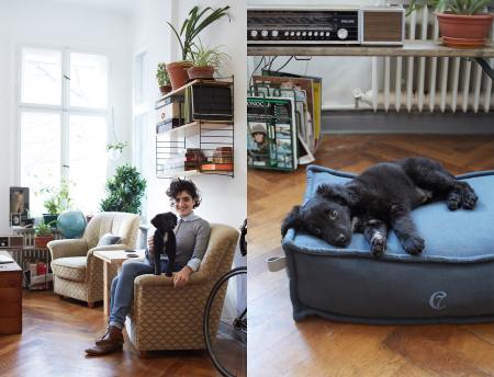 Adina & Kale, Kale with Dog Bed Cozy