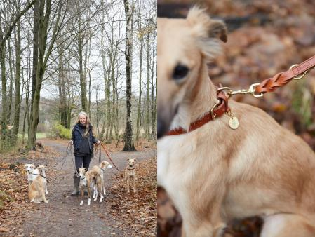 Svantje & her Whippets, Anthea with Collar & Leash Hyde Park
