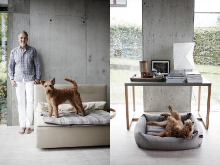 Thomas & Buddy , Buddy with Dog Bed Sleepy Deluxe