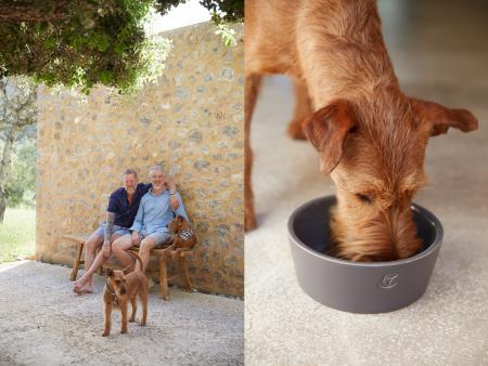 Thomas, Frank & Buddy, Buddy with Dog Bowl Oliver