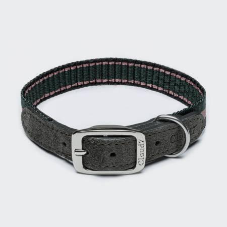 Sportives Hundehalsband mit Streifen und Wildleder