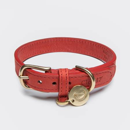 Closed red leather collar with golden closure