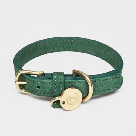 Geschlossenes grünes Lederhalsband mit goldener Schnalle