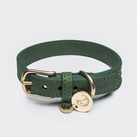Closed green leather collar for dogs with gold buckle
