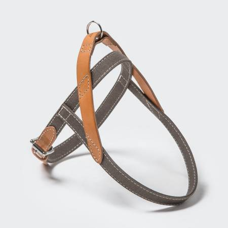 Stylish dog harness in cotton canvas and leather