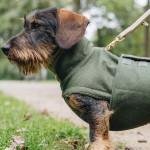 Hundemantel Brooklyn DACKEL Flanell Fern Green