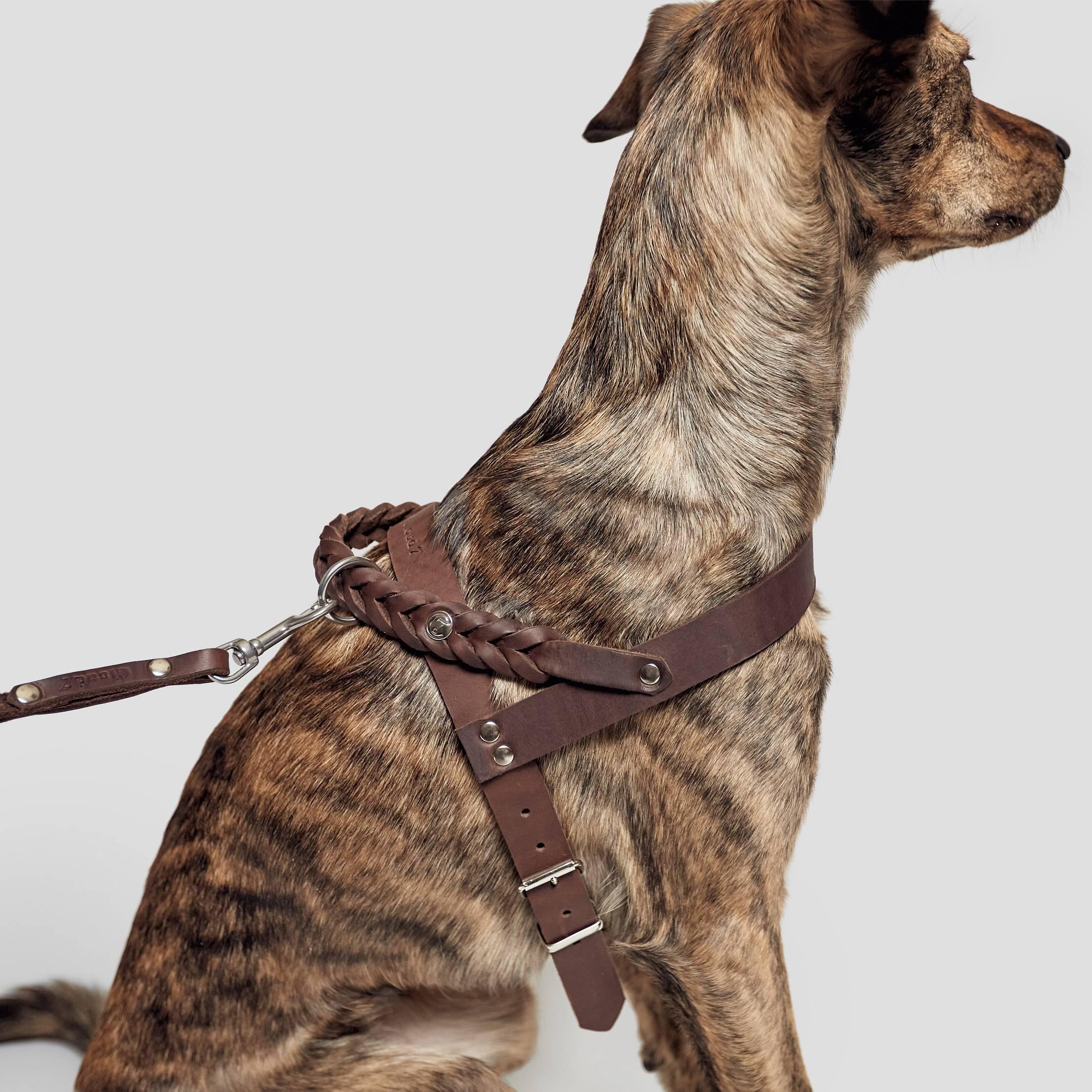 Dog Harness Central Park Saddle Brown