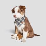 Cloud7 Bandana Dark Blue - Beige Hund