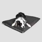 Bordercollie liegt auf dunkelgrauem Hundekissen aus wasserabweisendem Stoff für den Outdoor Bereich