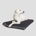 Weißer Mischling liegt auf dunkelgrauem Hundekissen aus wasserabweisendem Stoff für den Außenbereich