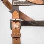 Nahaufnahme eines Hundegeschirrs aus grauem robustem Baumwoll-Canvas mit Leder und silberner Schnalle