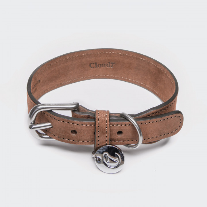 Brown dog leather collar with silver details