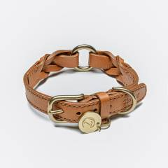 braided leather dog collar with brass parts in Cognac