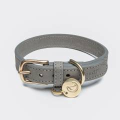 Closed grey leather collar with golden buckle
