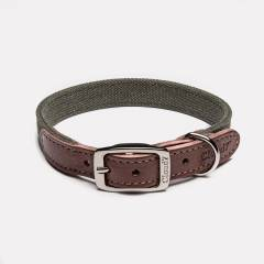 Durable collar made of robust green cotton canvas and dark brown leather