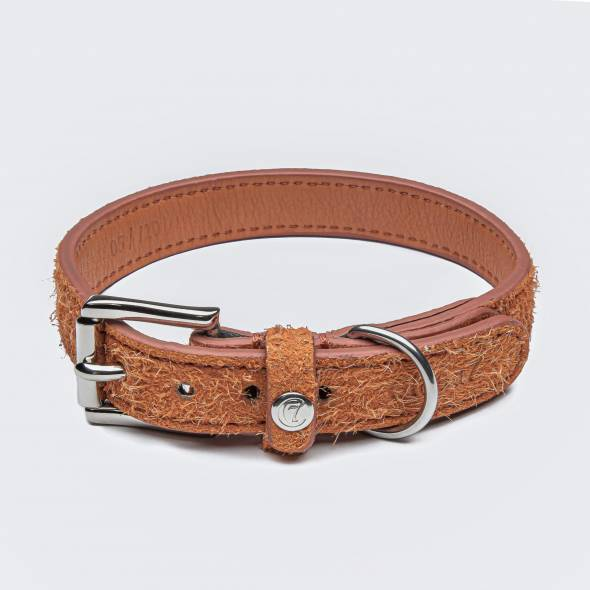 Orange suede leather dog collar