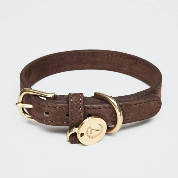 Closed brown leather collar with golden buckle