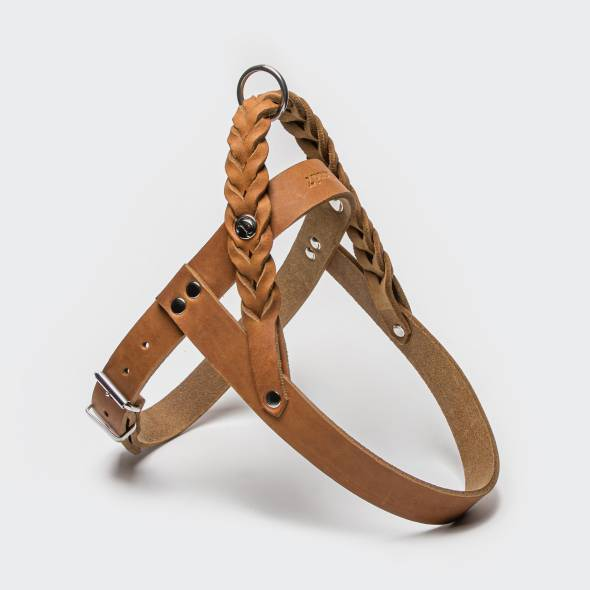 Light brown leather dog harness with braided details and silver closure