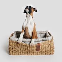 Hund im Cloud7 Hundekorb