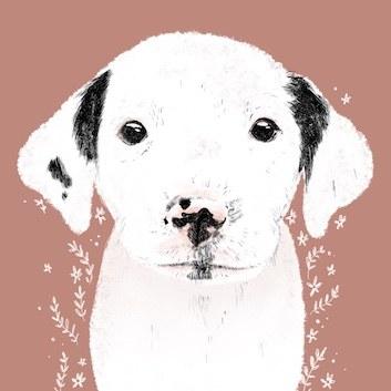 Illustration Tierschutzhund
