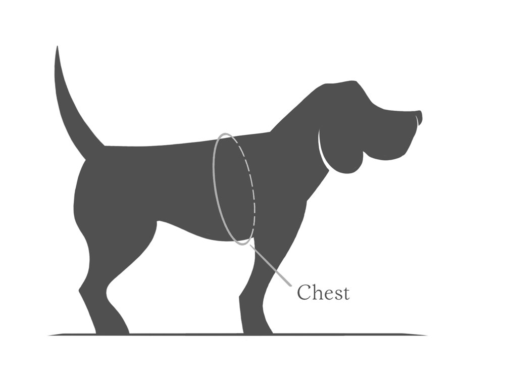 how to find the right size for a dog harness